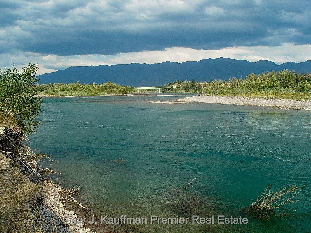 Flathead River Evergreen