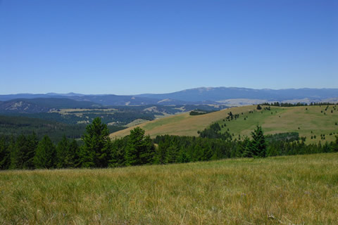 Mungas Ranch