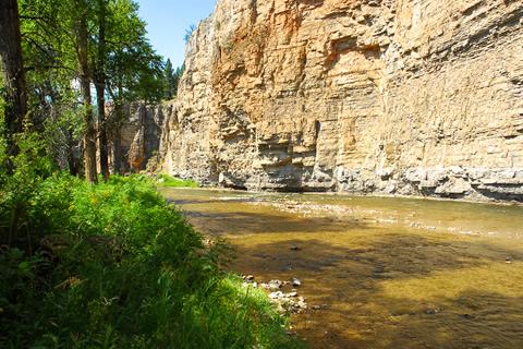 Smith River Cabin